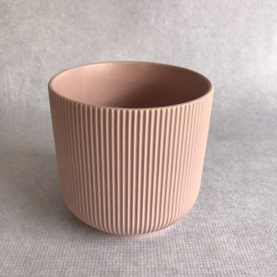 Cement / Ceramic